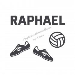 Appliqué thermocollant personnalisé ballon volley ball et chaussure en flex velours